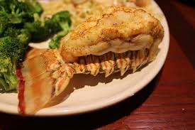 Red Lobster Fish meal
