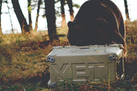 Yeti Cooler With Bear